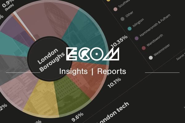 ECOM insights reports banner digital economy screenshot from the report